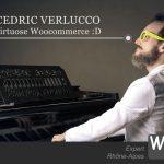 Expert Woocommerce Rhône-Alpes